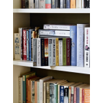 Bookcase Safe - Paperback Books
