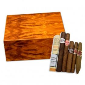 Stormlands Light Mahogany Humidor and Budget Cuban Cigar Sampler