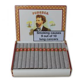 Fonseca KDT Cadetes - Box of 25
