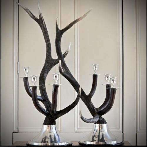 Silver Plated Antler Candelabra (Pair)